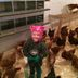 Chickens and kid