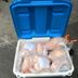 Bag of frozen chicken